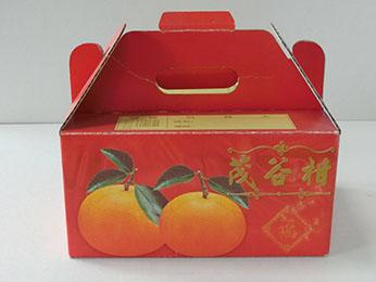 5斤彩色手提茂谷柑