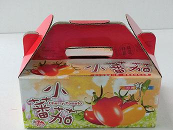 小蕃茄-3斤手提
