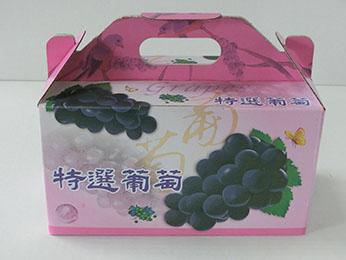 手提(彩)3斤葡萄