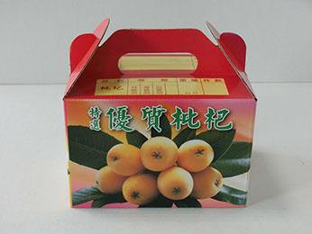 手提(彩)枇杷-2斤