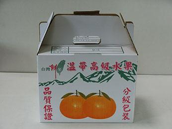 10斤水果手提(白)