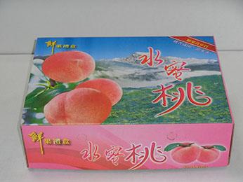 1/8加高水蜜桃禮盒