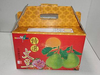 手提(彩)10斤文旦