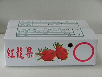 1層紅龍果(10斤)