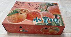 1/8水蜜桃禮盒